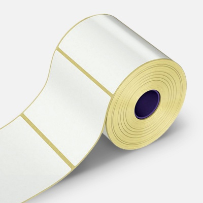 Samolepicí etikety 100x60 mm, 1000 ks, papírové pro TTR, role